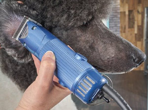 Oster Classic A5 Turbo Professional Animal Clipper