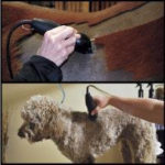 Wahl Professional PowerGrip Dog Clipper