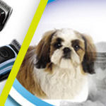 Best Dog Clippers for 2019