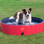 FrontPet Foldable Dog Pool Bathing Tub