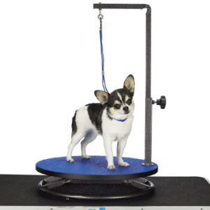 Master Equipment Round Grooming Table