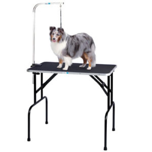 Master Equipment Grooming Table