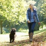 Exercising And Bonding With Your Dog